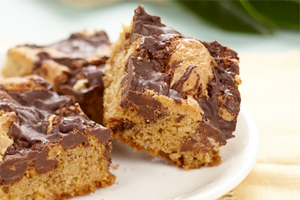 Chocolate Swirl Squares