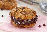 Chocolate Oatmeal Ice Cream Sandwich Cookies