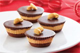 Chocolate PB Bites