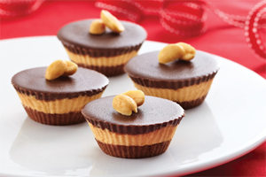 Chocolate PB Bites