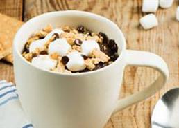 Chocolate S'mores Mug Cake